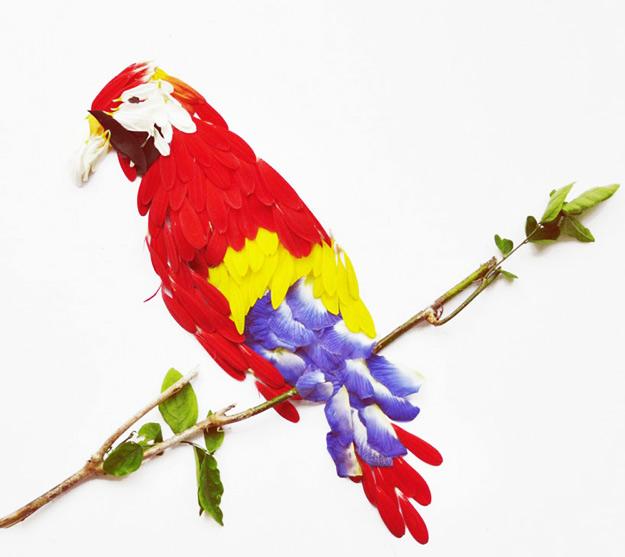 Егзотични птици направени од цветови