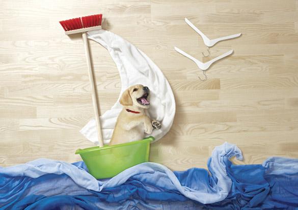 Креативни рекламни постери со домашни миленици
