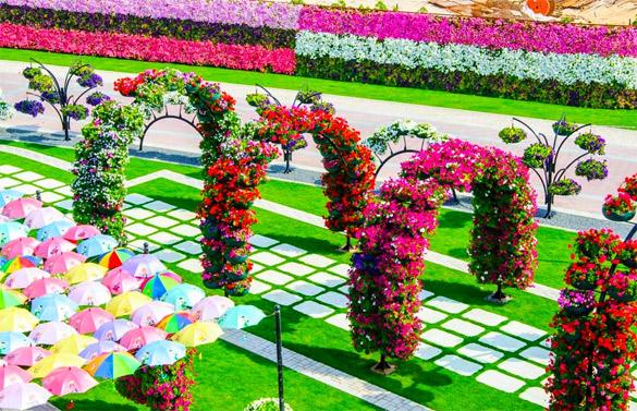 Cvetna-gradina-Dubai-iLike-mk-006