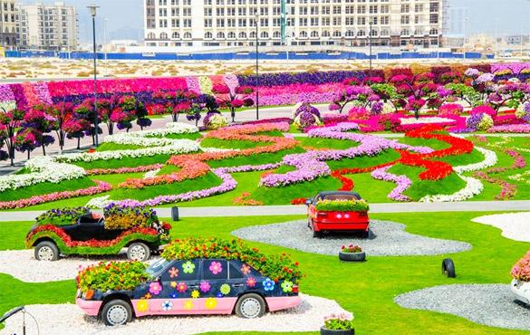 Cvetna-gradina-Dubai-iLike-mk-008