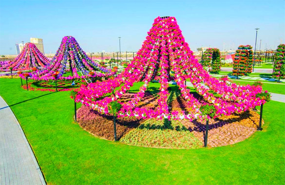 Cvetna-gradina-Dubai-iLike-mk-009