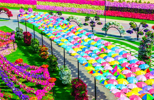 Cvetna-gradina-Dubai-iLike-mk-010