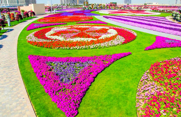 Cvetna-gradina-Dubai-iLike-mk-011