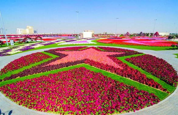 Cvetna-gradina-Dubai-iLike-mk-012