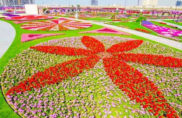 Cvetna-gradina-Dubai-iLike-mk-013