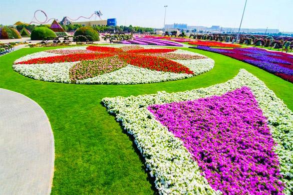 Cvetna-gradina-Dubai-iLike-mk-014