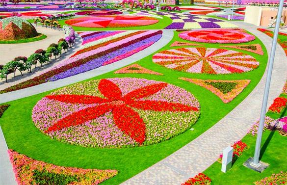 Cvetna-gradina-Dubai-iLike-mk-016