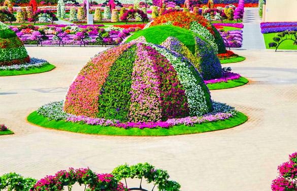 Cvetna-gradina-Dubai-iLike-mk-018