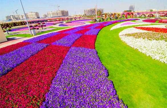 Cvetna-gradina-Dubai-iLike-mk-020