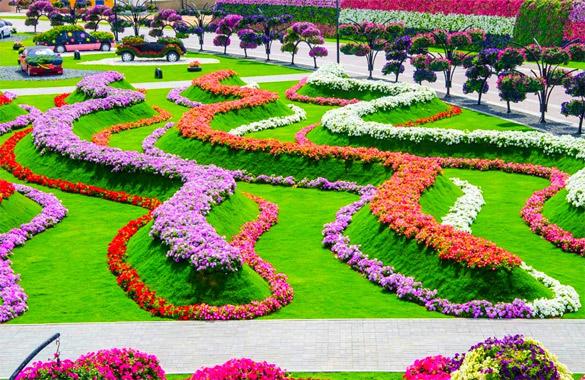 Cvetna-gradina-Dubai-iLike-mk-022