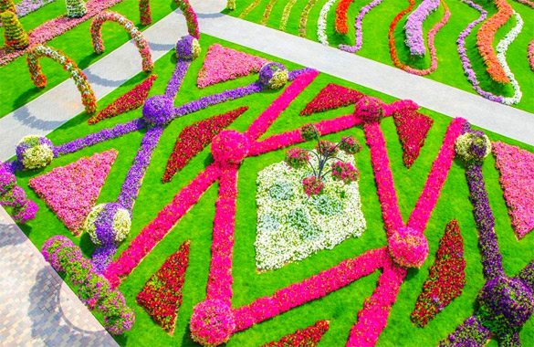 Cvetna-gradina-Dubai-iLike-mk-023