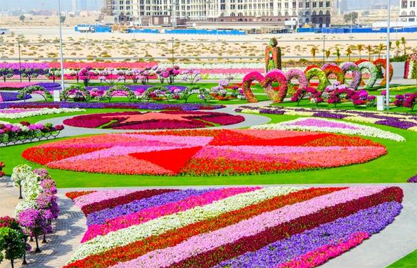 Cvetna-gradina-Dubai-iLike-mk-024