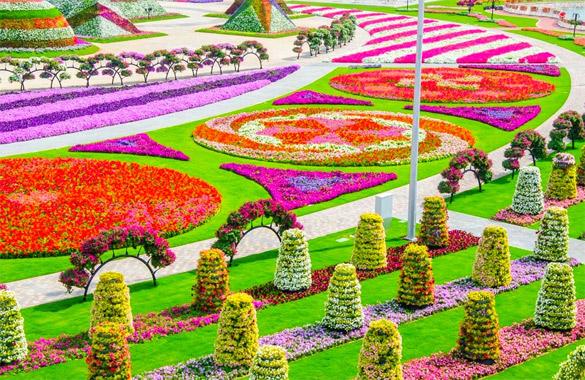 Cvetna-gradina-Dubai-iLike-mk-025