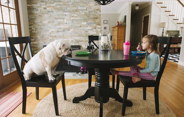 a-young-girl-and-a-dog-by-rebecca-leimbach-ilike-mk-013