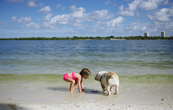 a-young-girl-and-a-dog-by-rebecca-leimbach-ilike-mk-019