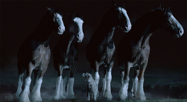 Budweiser-Super-Bowl-2015-Commercial-iLike-mk
