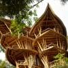 Куќа со необична форма изработена од бамбусово дрво