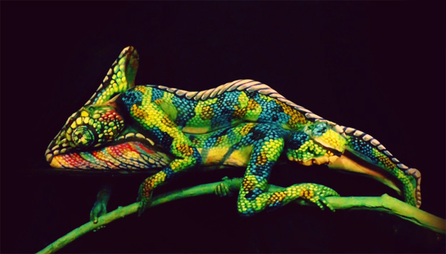 Kameleon-od-zhenski-tela-iLike-mk