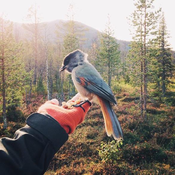 couple-traveling-around-world-photography-samuel-hildegunn-scandinavia-99-605x605