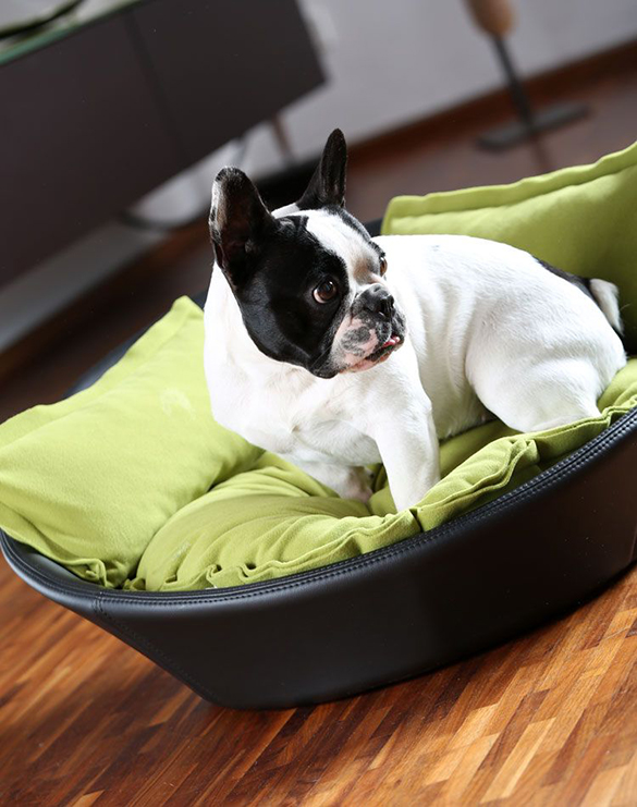 MILA-puppy-bed-out-of-faux-leather