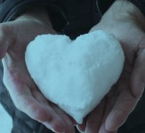 ledeno-srce